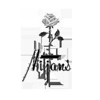 MITJANS logo